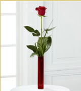 Vazo içerisinde 1 adet kırmızı gül  Çorum online çiçek gönderme sipariş