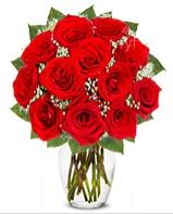 12 adet vazoda kıpkırmızı gül  Çorum uluslararası çiçek gönderme