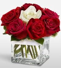 Tek aşkımsın çiçeği 8 kırmızı 1 beyaz gül  Çorum anneler günü çiçek yolla