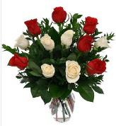 Vazo içerisinde 6 kırmızı 6 beyaz gül  Çorum çiçek siparişi sitesi