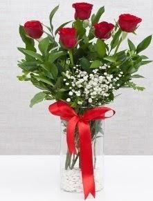 cam vazo içerisinde 5 adet kırmızı gül  Çorum 14 şubat sevgililer günü çiçek