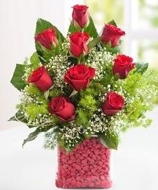Cam içerisinde 9 adet kırmızı gül  Çorum internetten çiçek siparişi