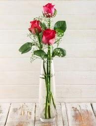 Cam içerisinde 3 kırmızı gül  Çorum ucuz çiçek gönder