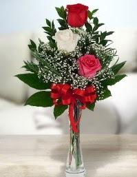 Camda 2 kırmızı 1 beyaz gül  Çorum çiçekçi mağazası