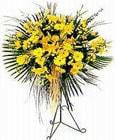 Çorum çiçek yolla , çiçek gönder , çiçekçi   Sari kazablanka Ferforje