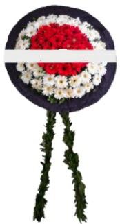 mozele çiçeği  Çorum çiçek servisi , çiçekçi adresleri