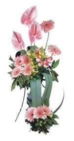 Çorum online çiçekçi , çiçek siparişi  Pembe Antoryum Harikalar Rüyasi