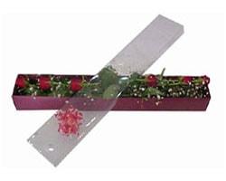 Çorum çiçek online çiçek siparişi   6 adet kirmizi gül kutu içinde