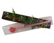 Çorum çiçek siparişi sitesi  3 adet gül.kutu yaldizlidir.