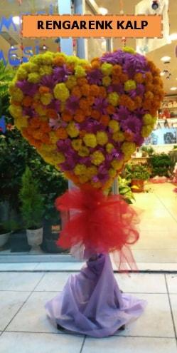 Ankara mevsim çiçeklerinden kalp perförje  Çorum çiçek , çiçekçi , çiçekçilik