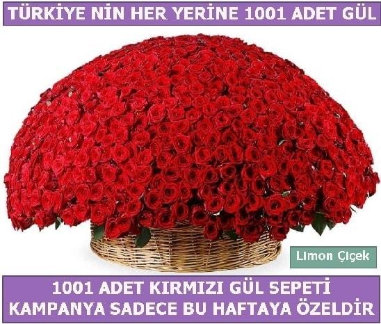 1001 Adet kırmızı gül Bu haftaya özel  Çorum çiçek yolla