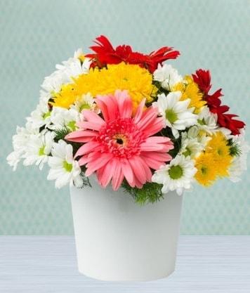 Seramik Vazoda Gelbera ve Papatya  Çorum çiçek satışı