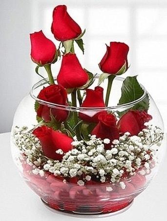 Kırmızı Mutluluk fanusta 9 kırmızı gül  Çorum çiçekçiler
