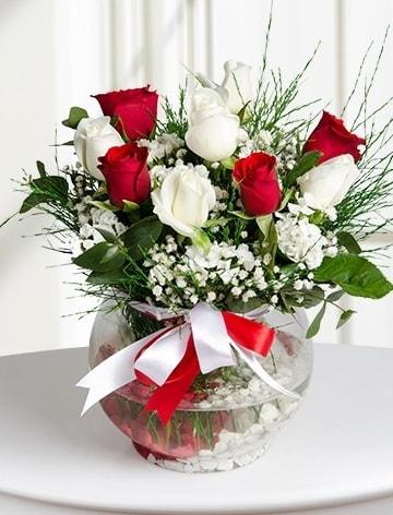 Aşk Küresi  5 beyaz 5 kırmızı gül fanusta  Çorum internetten çiçek siparişi