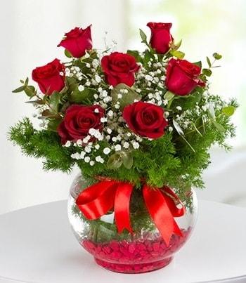 fanus Vazoda 7 Gül  Çorum hediye çiçek yolla