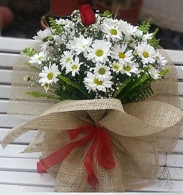 Papatya 1 adet kırmızı gül buketi  Çorum çiçek siparişi vermek