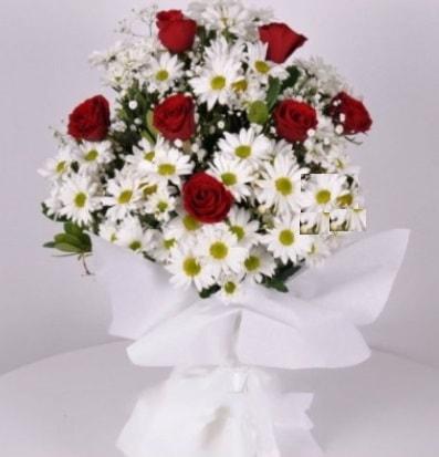 7 adet kırmızı gül ve papatyalar krizantem  Çorum internetten çiçek siparişi