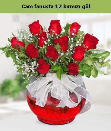 Cam içerisinde 12 adet kırmızı gül  Çorum internetten çiçek siparişi