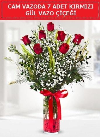 Cam vazoda 7 adet kırmızı gül çiçeği  Çorum çiçek gönderme
