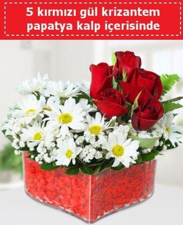 mika kalp içerisinde 5 kırmızı gül papatya  Çorum çiçek satışı