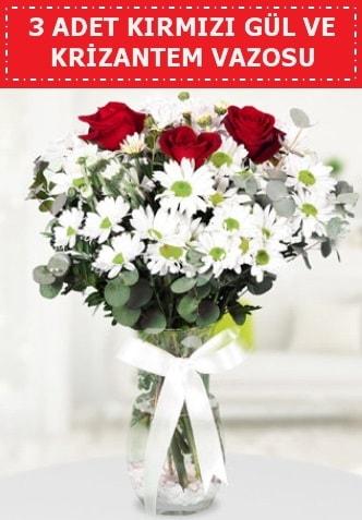 3 kırmızı gül ve camda krizantem çiçekleri  Çorum çiçek satışı