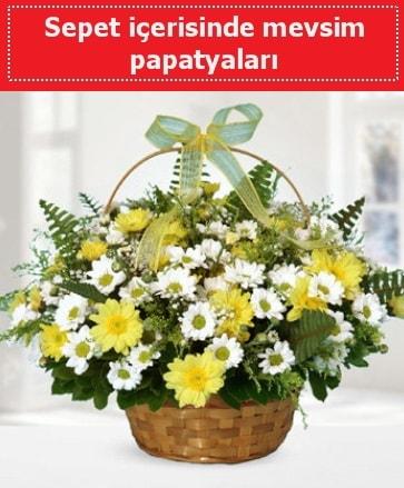 Sepet içerisinde mevsim papatyaları  Çorum çiçekçi mağazası