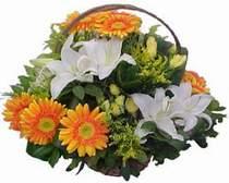 Çorum İnternetten çiçek siparişi  sepet modeli Gerbera kazablanka sepet