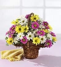 Çorum çiçek siparişi vermek  Mevsim çiçekleri sepeti